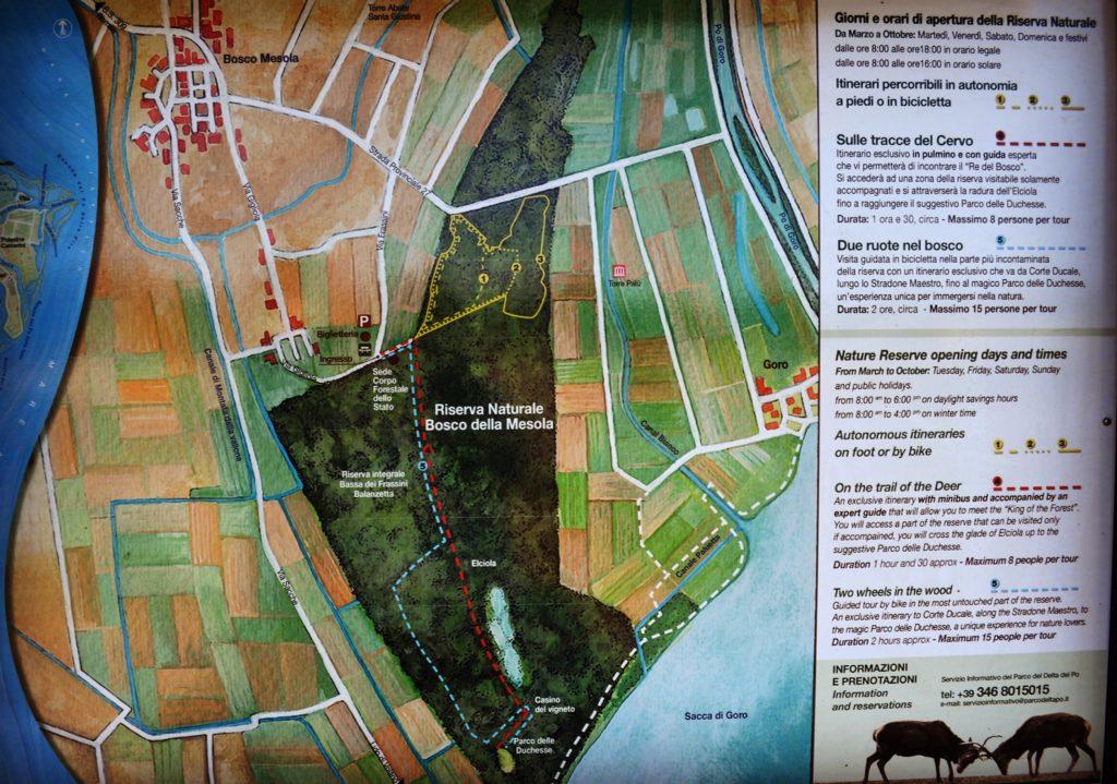Riserva Naturale del Gran Bosco della Mesola