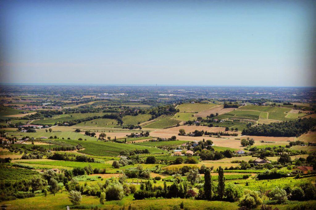 Bertinoro panorama