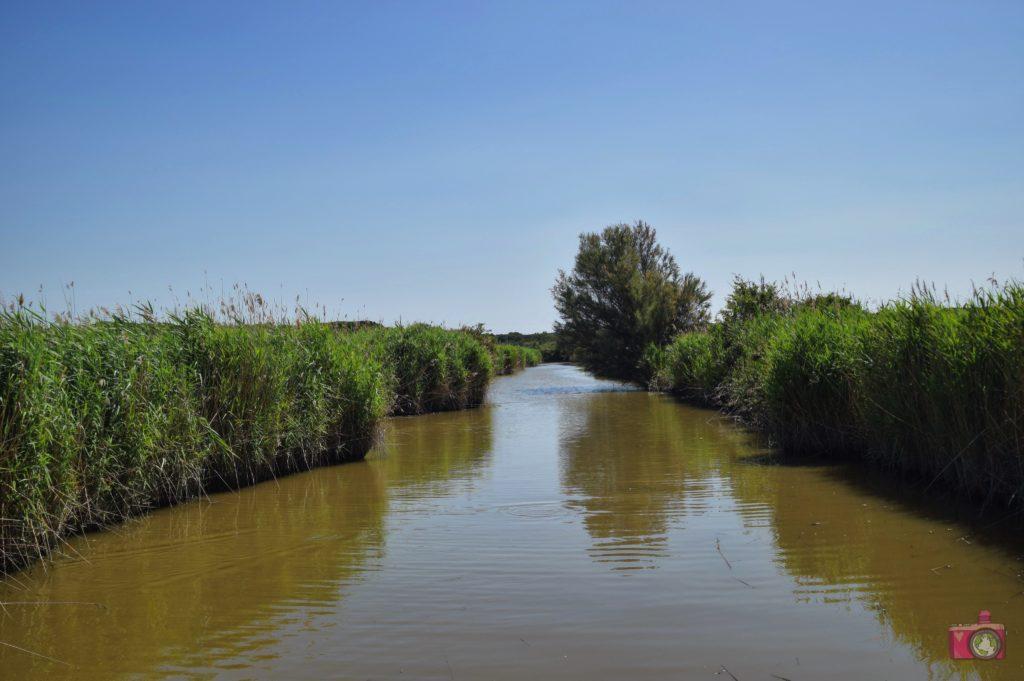 Escursione in barca Delta del Po Volano