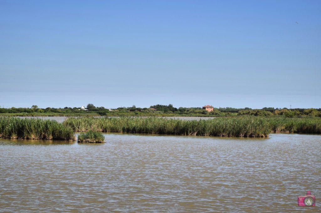 Oasi Canneviè Delta del Po Volano