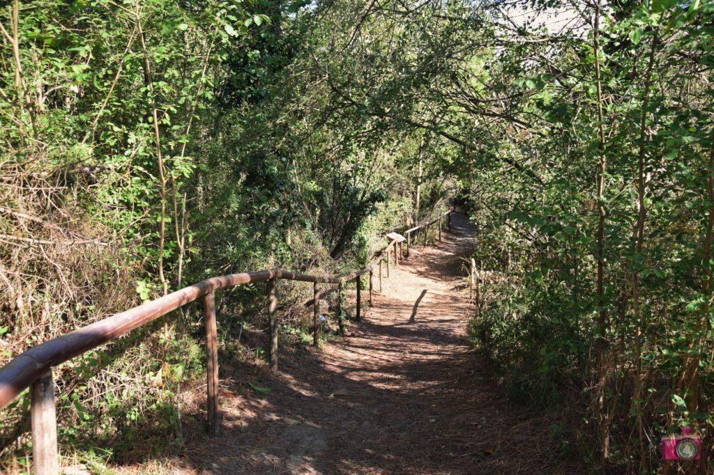 Giardino Botanico Litoraneo Porto Caleri percorso A giallo