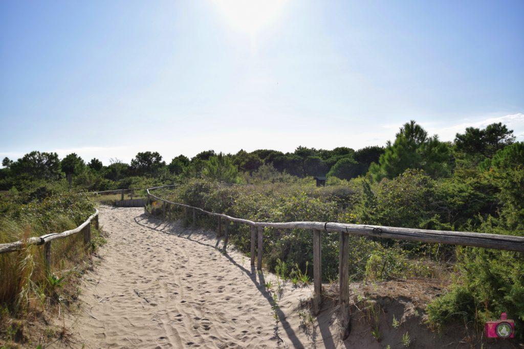 Giardino Botanico Litoraneo Porto Caleri percorso B rosso spiaggia