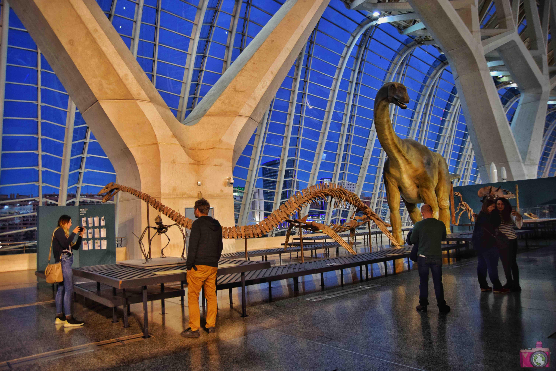 Visitare Valencia Città delle Arti e delle Scienze Museo delle Scienze